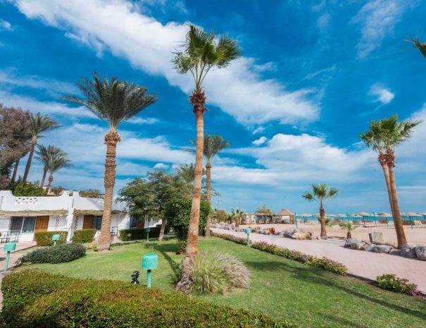 Shams-Safaga-Resort-(10)