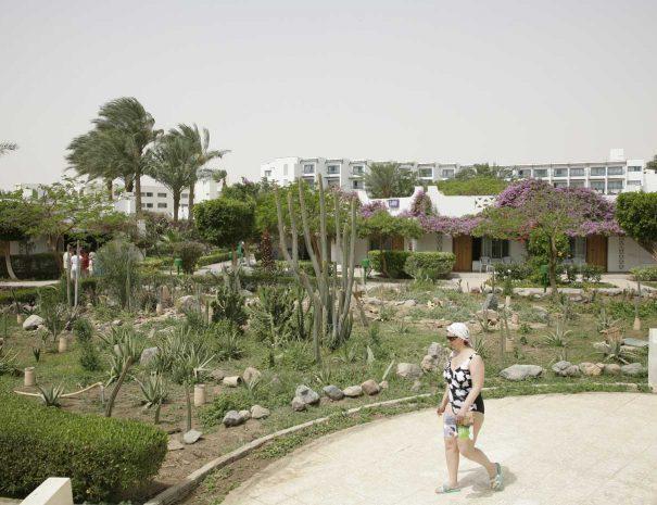 Shams-Safaga-Resort-(81)